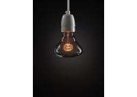 Flat Twist Decorative Light Bulb