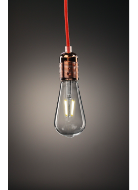 Edison LED 4W decorative light bulb